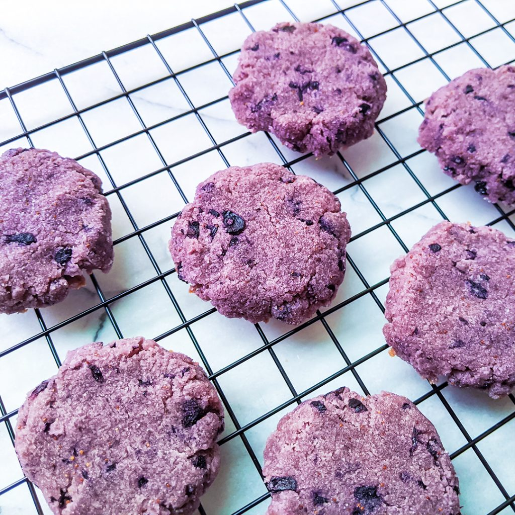 Blueberry Cake Cookies (AIP & Top 8 Free)